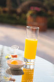 Glass of orange juice on table in a garden. Stock Images