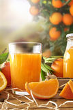 Glass of orange juice on a wooden in field vertical Royalty Free Stock Images