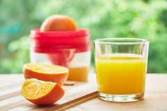 Glass, oranges and juicer Stock Photos