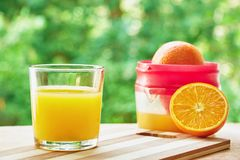 Glass, oranges and juicer Royalty Free Stock Image