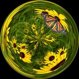 Glass orb with blackeyed susens and monarch butterfly
