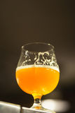 Glass of pale ale in a brewery Royalty Free Stock Photos