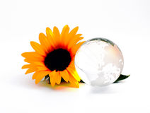 Glass, Paperweight. Glass paperweight crystal clear color on a white background Stock Photography