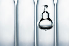 Pear in the bottle Royalty Free Stock Images