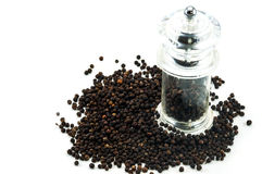 Glass pepper Grinder of black peppercorn Stock Photography