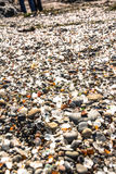 Glass pieces in the Glass Beach, Fort Bragg Royalty Free Stock Photo