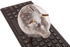 Glass piggy bank on black keyboard Stock Image
