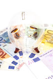 Glass piggy bank surrounded by Euro notes Stock Photo