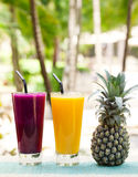 Glass of pineapple and dragon fruit smoothie, juice Royalty Free Stock Photo