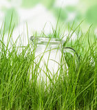 Glass pitcher of milk standing on grass close up Stock Images