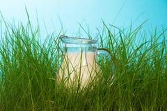 Glass pitcher of milk Stock Photo