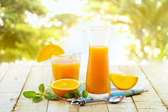Glass and pitcher of orange juice on wooden, on green nature Royalty Free Stock Photos