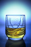 Glass of plum brandy Royalty Free Stock Image
