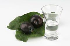 Glass of plum brandy Royalty Free Stock Photography