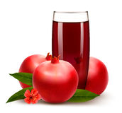 Glass of pomegranate juice with fruit. Stock Photos