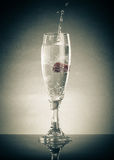 Glass of pop, raspberry and splashes on a light background. With Royalty Free Stock Photos