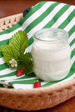Glass pot of creamy natural yoghurt Royalty Free Stock Photo