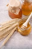 Glass pot with honey Royalty Free Stock Photos