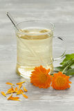 Glass with pot marigold tea Royalty Free Stock Photography