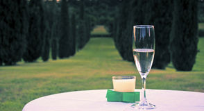 Glass of prosecco. A sparkling glass of prosecco in a great scenery royalty free stock photo