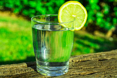 Glass of pure water with lemon wedge circle on wood log, green grass plants in the background, outdoors, bright sunlight. Health, hydration, detox, cleansing Stock Image