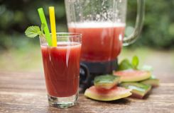 Glass of pure watermelon Juice with straw and Shaker on daylight Royalty Free Stock Photos