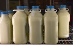 Glass quart and half gallon vintage containers of white milk on grocery Stock Photo