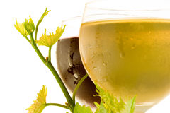 glass röd vit wine Arkivfoto