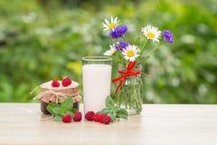 Glass of raspberry yogurt  with fresh berries of raspberry. Cham Stock Images