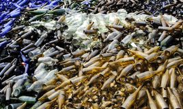 Glass Recycling II. Bottles at a glass recycling plant Stock Images
