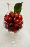 Glass of red cherries Stock Photo