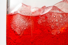 Glass of red drink with ice cl Stock Images