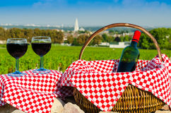 Glass of red vine, burgundy, france Royalty Free Stock Photos
