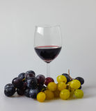 Glass of red vine with red and white and dark grapes Stock Images
