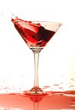 Glass of red wine. Royalty Free Stock Images