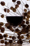 Glass of red wine. Detailed glass of red wine with some dry flowers on the background Stock Image