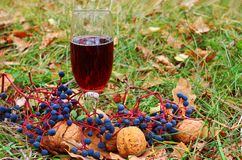 Glass of red wine. In the grass Stock Photos