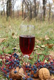 Glass of red wine. In the grass Stock Image