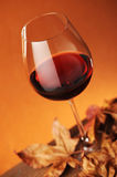 Glass of red wine. With dry leaves, shallow dof Royalty Free Stock Image