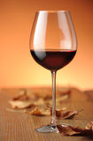 Glass of red wine. On a shelf in wood, with dry leaves Royalty Free Stock Photos
