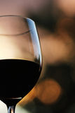 Glass of red wine. On blur background Royalty Free Stock Image