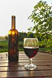 Glass of red wine with bottle and red berries on wooden table with green fields, bush and sunset in the background Stock Photography