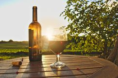 Glass of red wine with bottle, cork and red berries on wooden table with green fields, bush and sunset in the background. Glass of red wine with open bottle Stock Photos