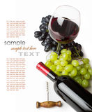 Glass of red wine with bottle and grapes Royalty Free Stock Photography