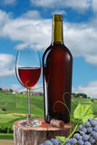 Glass of red wine and bottle on stump Royalty Free Stock Photography