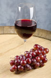 Glass of Red Wine and a Bunch of Grapes Stock Image