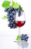 Glass of red wine and bunch of grapes isolated Stock Photo