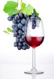 Glass of red wine and bunch of grapes with leaves isolated Royalty Free Stock Image