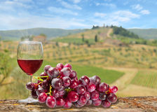 Glass of red wine with bunch of grapes with the Tuscany Royalty Free Stock Photos
