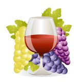 Glass of red wine and cluster of vine Royalty Free Stock Photography